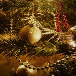 ChickAdvisor 50-50 Christmas Contest