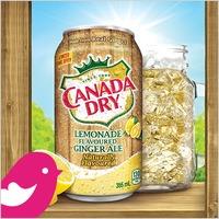 NEW Product Review Club® Offer / NOUVELLE Offre Club des bancs d'essai : Canada Dry Lemonade Flavoured Ginger Ale