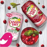 NEW Product Review Club® Offer: Canada Dry Cranberry Ginger Ale / NOUVELLE Offre Club des bancs d'essai:  soda gingembre aux canneberges de Canada Dry