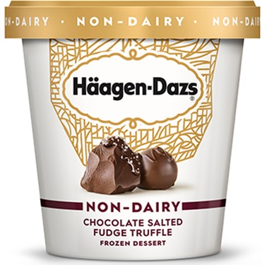 Haagen Dazs Non Dairy Salted Chocolate Fudge Truffle
