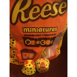 Reese Miniatures Stuffed Pieces