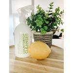 Sapadilla Rosemary + Peppermint Countertop Cleanser