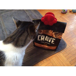 Crave With Chicken - High Protien Cat Food