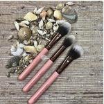 Luxie brush set