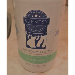 Scentsy Laundry Liquid - Various Scents