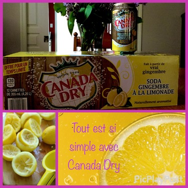 Canada Dry Lemonade Flavoured Ginger Ale