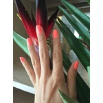 Quo by Orly Nail Polish in After Glow