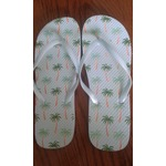 Dollartree Flipflops