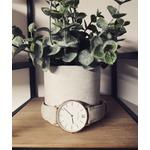Les montres Capitola