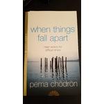 Pema chondron when things fall apart