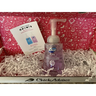 Dial Pure Micellar Foaming Hand Wash Hyacinth