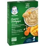 Gerber baby organic mango and carrot oatmeal