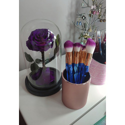 Coshine Unicorn Rainbow Makeup Brush Set