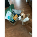 Open Farm Dry Dog Food - Puppy