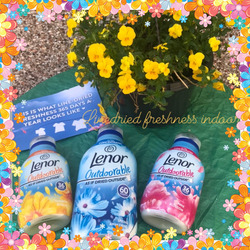 Lenor Outdoorable