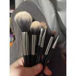 focallure brushes