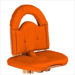 Chair Cushion in Orange