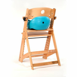 Keekaroo High Chair and Infant Insert Rail, Aqua