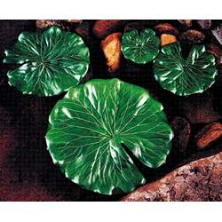Lily Pads Small