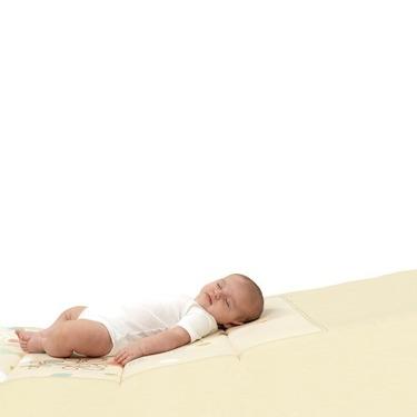 Bright Starts InGenuity Playard with Inclined Sleeping - Bella Vista