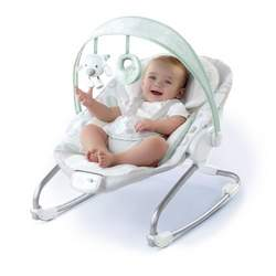 Bright Starts Ingenuity Grow With Me Rocker, Turtle Dove
