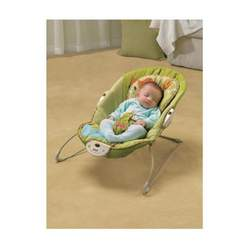 Fisher-Price Green Meadows Bouncer