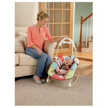 Fisher-Price Swing 'n Rocker, Multi