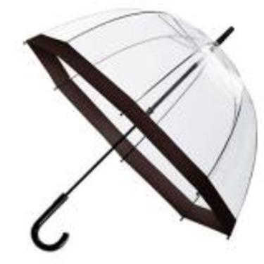 Birdcage Clear PVC Umbrella
