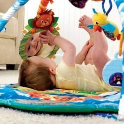Baby Einstein Around The World Play Gym