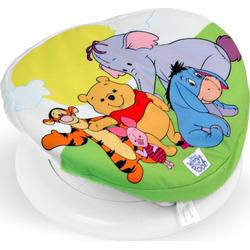 Winnie the Pooh Spin Garden Gym