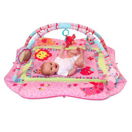 Bright Starts Baby S Deluxe Play Place Pink Reviews In