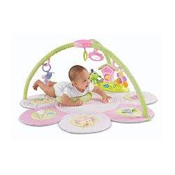 Fisher-Price Perfectly Pink: Musical Fairyland Gym