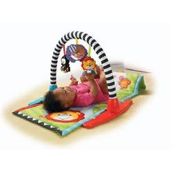 Fisher-Price Zoo Friends Musical Gym