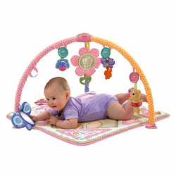 Fisher Price Bear Gym
