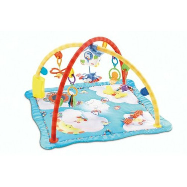 Fisher-Price Flutterbye Dreams Deluxe Gym