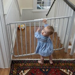 Cardinal Pet Gates Stairway Special Gate, White