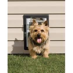 PetSafe Wall Entry Dog Door - Small