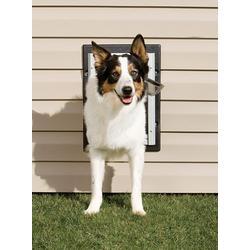 PetSafe Wall Entry Dog Door - Medium