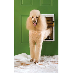 PetSafe Extreme Weather Per Door - Large