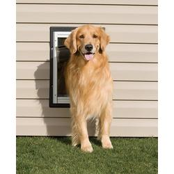 PetSafe Wall Entry Dog Door - Large