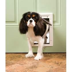 PetSafe Plastic Pet Door - Small