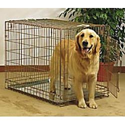 General Cage Folding Dog Crate Gold Model 202