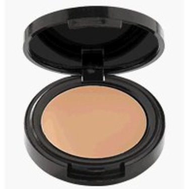 Mark Invisible Touch Perfecting Concealer