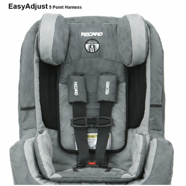 Recaro ProRIDE Convertible Car Seat, Misty