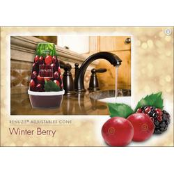 Renuzit® Adjustables Cones Winter Berry