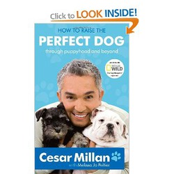 How to Raise the Perfect Dog - by Cesar Millan