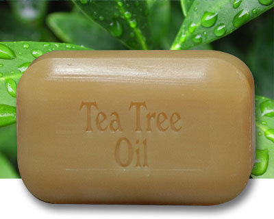 The Soap Works Tea Tree Oil Soap Reviews In Natural