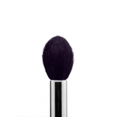 Blank Canvas Cosmetics Pro Deluxe Brush (F15)