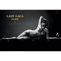 Lady Gaga's Fame