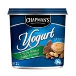 Chapman's Crispy Peanut Butter Crunch Frozen Yogurt